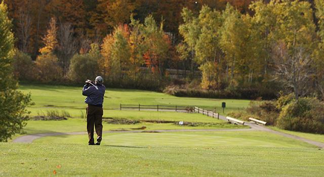 11++ Chestnut hill golf darien ny information